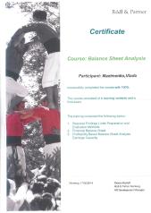Максименко_Balance Sheet Analysis