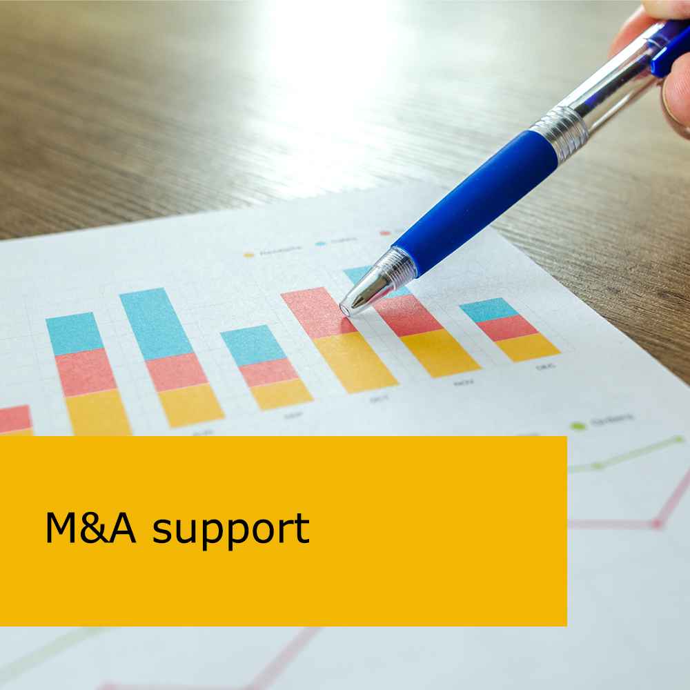 M&A support