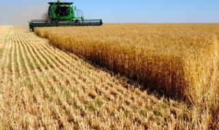 Агросектор после соглашения с ЕС: чем угрожает и как повлияет ассоциация на малый бизнеc
