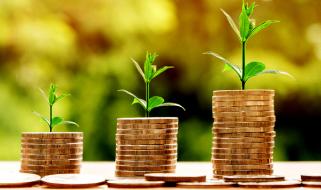 Успешны ли инвестиции в агробизнес Украины